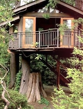 Tree House, Marin, California