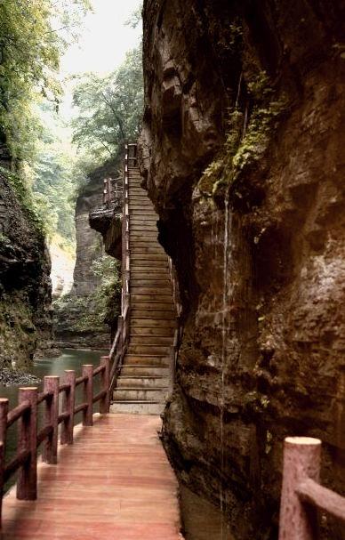 Canyon Path, Japan