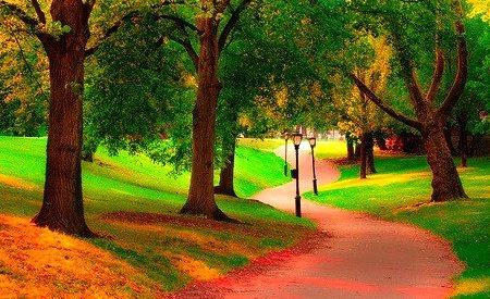 Autumn Path, Central Park, New York City