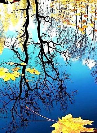 Autumn Reflection, Russian Federation