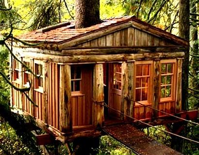 Temple of the Blue Moon Treehouse, Issaquah, Washington