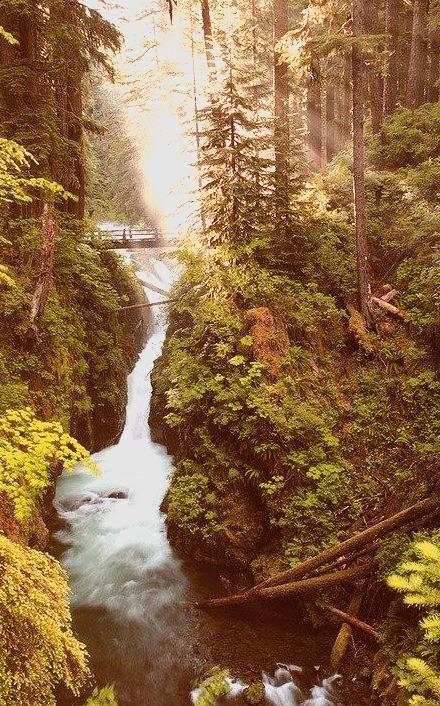Sol Duc Falls, Olympic National Park, Washington